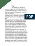 Anon Medicina China Fitoterapia
