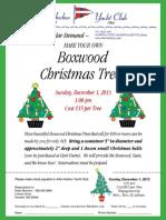 Make Your Own Boxwood Christmas Trees