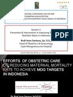 03 - Dr Budi Iman Santoso Brief Outline as Panel Member