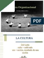 Cultura Organizacion 2