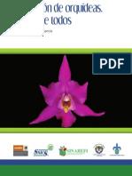 CONSERVACION DE ORQUIDEAS UNA TAREA DE TODOS.pdf