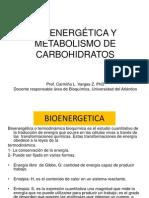 Bioenergetica y Metabolismo de Carbohidratos (1)
