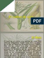 Unidad 1 Produccion Vegetal