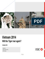 Vietnam 2014 - will the tiger roar again?