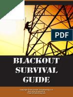 Blackout Survival Guide