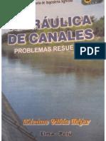 LIBRO DE PRÁCTICA VILLON