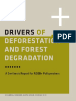 Drivers Deforestation Report