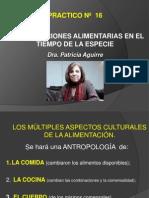 Transiciones Alimentarias Aguirre ULTIMO Con Macros