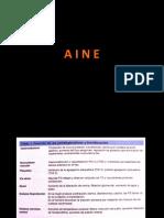 55454357-CLASIFICACION-AINES