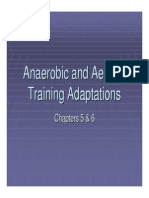 Metabolic Adaptation 2