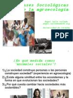 Bases Sociolgicas de la Agroecologa a. Calle C.