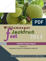 Williamnagar Jackfruit Festival 2013