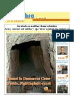 No282-Newslettr Daily E 31-10-2013