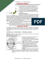 Biology _ Zoology Unit 7 Detailed Study of Frog