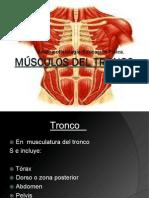 Músculos del tronco.ppt