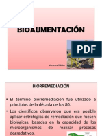 Bioaumentacion