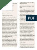 Análisis de la obra ROSA CUCHILLO de Oscar Colchado