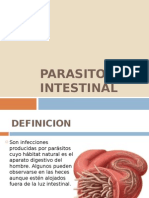 Tema 33 Parasitosis Intestinal