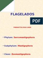 CLASE FLAGELADOS