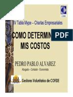Costos Polos Determinacion de Costos Pedro Alvarez