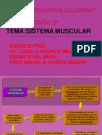 Sistemamuscular-sesion de Reforzamiento-miguel Quiroz