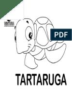 Vida de Tartaruga Colorir