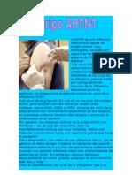 LAGRIPE es una infección respiratoria aguda de origen animal