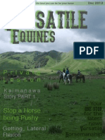 Versatile Equines Magazine