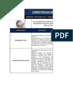 DICCIONARIO DE COMPETENCIAS CONDUCTUALES Y TÉCNICAS
