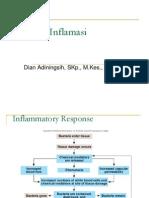 Respon Inflamasi2