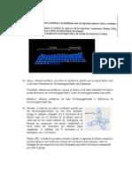 cuestión selectividad madrid 2003 sobre enlaces atómicos