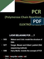 PCR Dan Elektroforesis