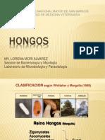 HONGOS 2009.ppt