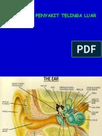 Penyakit Telinga Luar