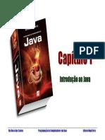 Cap 1 - R R Santos - Programa-¦ção de Computadores em Java