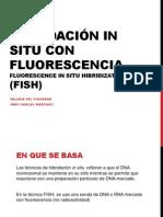 Hibridación in situ con fluorescencia.pdf