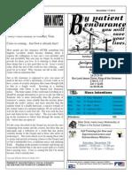 St. Augustine Catholic Church Sunday Bulletin, November 17, 2013
