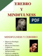 Mindfulnes y Cerebro