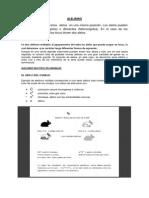 Alelismo, Pleitropia y Alelos Letales, conceptos básicos en genética