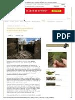 Governo expulsa moradores tradicionais de Suape - Blog Ciência Meio Ambiente
