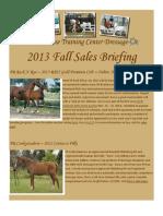 Prairie Rose Training Center Fall Sales Briefing 2013
