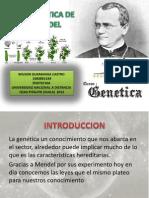 Genetica+Unidad+1+Capitulo+2
