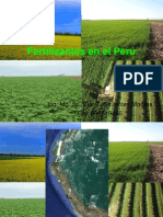 FERTILIZANTES_EN_EL_PERU-ING_ELAR_SIFUENTES - copia.pdf