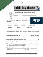 Utilidad de Las Plantas Ficha