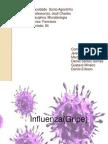 Influenza - Completo