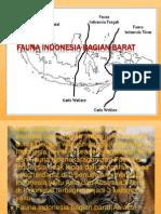 Fauna Indonesia Bagian Barat