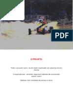 Kartcross Sidewinder 100626091159 Phpapp02