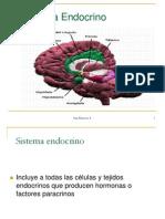 03_PresentaciOn Sistema Endocrino