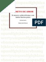 comnerudasonetodeamor-110210165929-phpapp02
