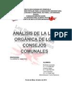 Analisis de La Ley Organica de Los Consejos Comunales